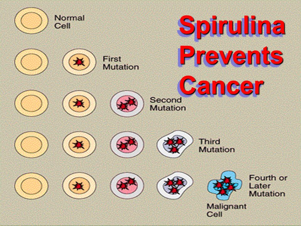 Spirulina Prevents Cancer
