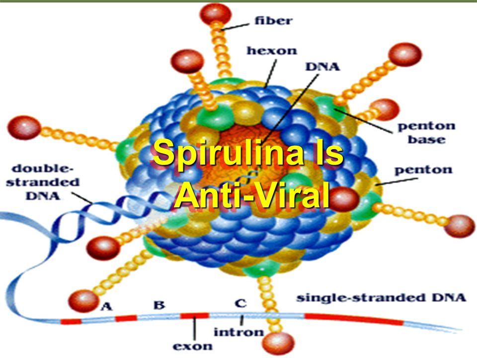 Spirulina Is Anti-Viral