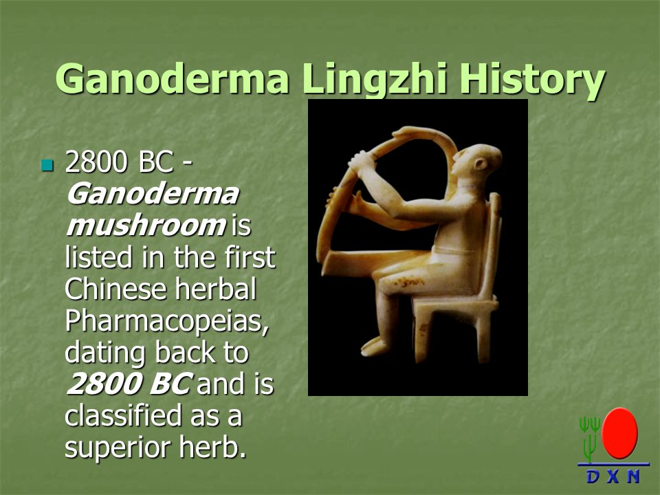 Ganoderma Lingzhi History
