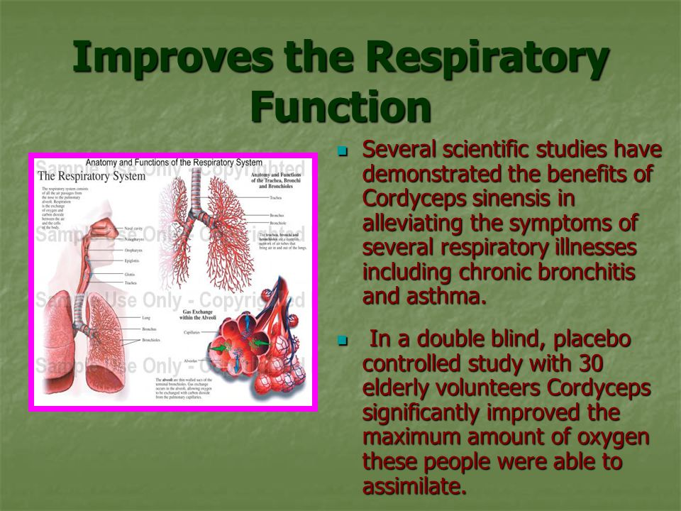 Improves the Respiratory Function
