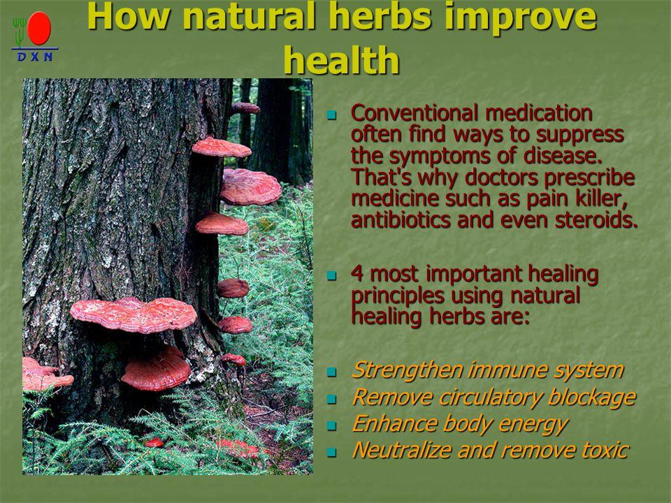 How natural herbs improve health
