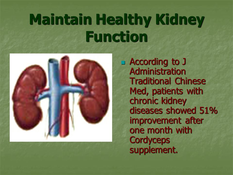Maintain Healthy Kidney Function