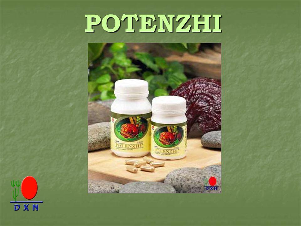 POTENZHI