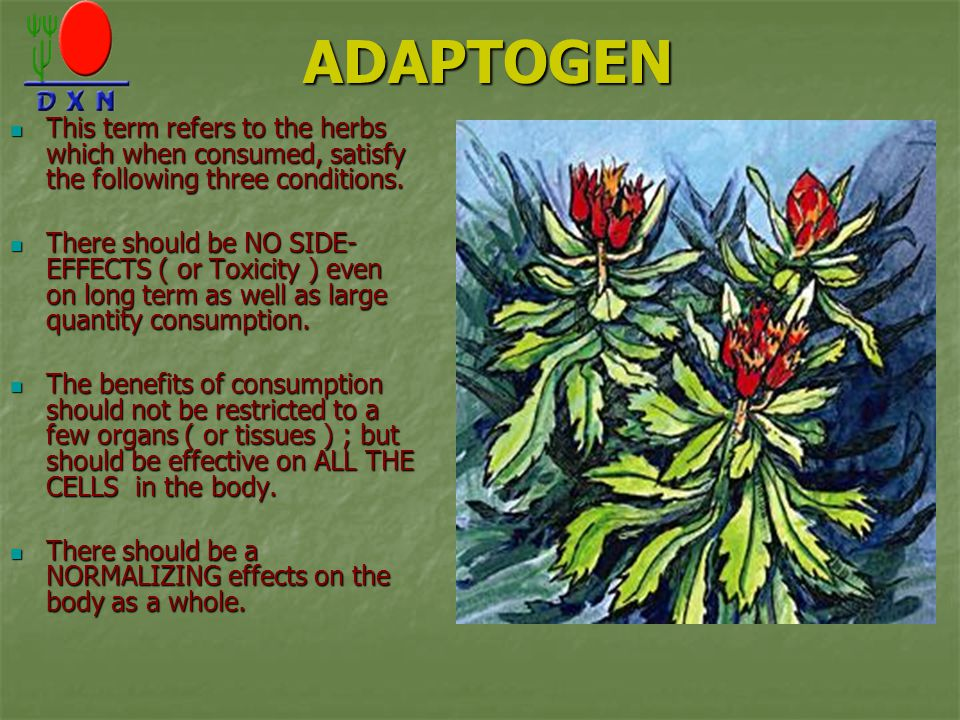ADAPTOGEN This term refers to the herbs which when consumed, satisfy the following three conditions.
