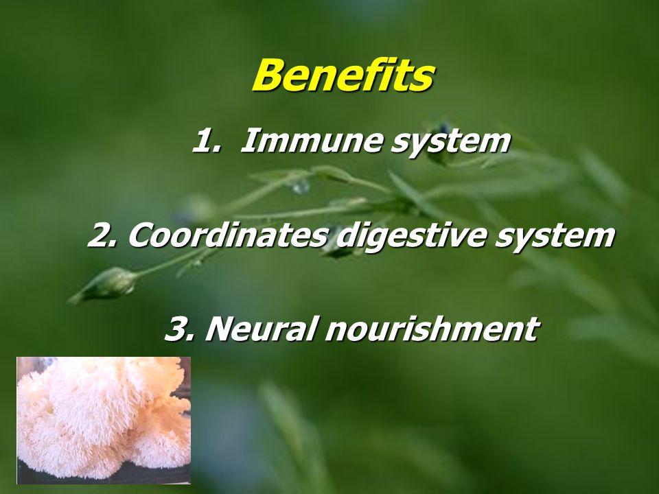 1. Immune system 2. Coordinates digestive system 3. Neural nourishment