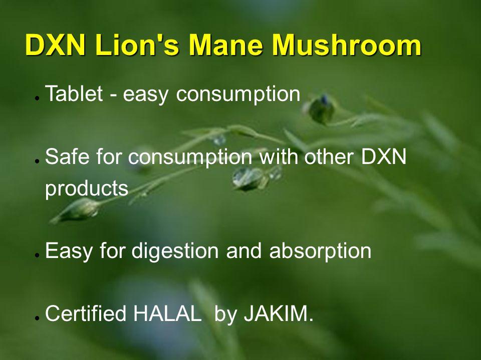 DXN Lion s Mane Mushroom