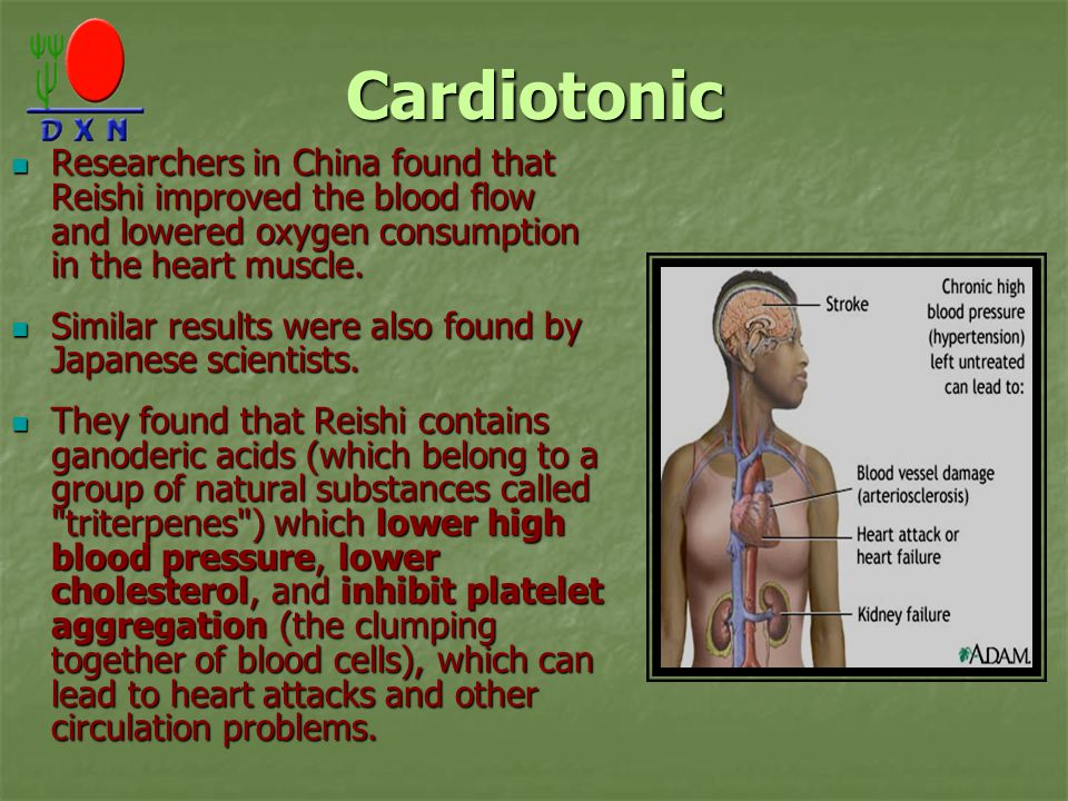 Cardiotonic Researchers in China found that Reishi improved the blood flow and lowered oxygen consumption in the heart muscle.