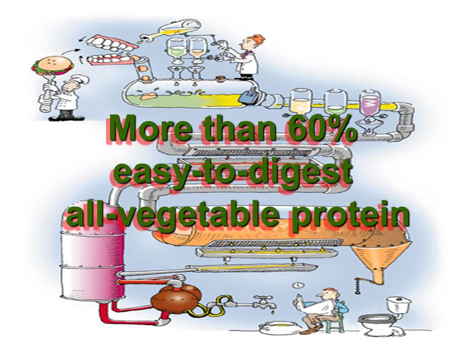 all-vegetable protein