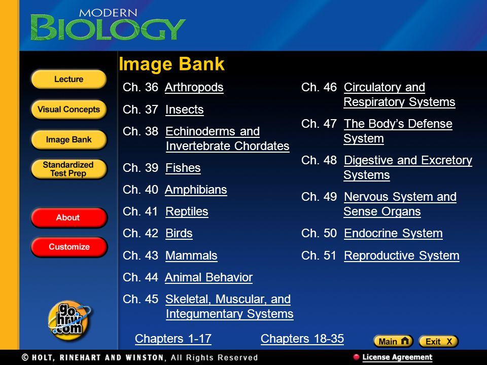 Image Bank Ch. 36 Arthropods Ch. 37 Insects