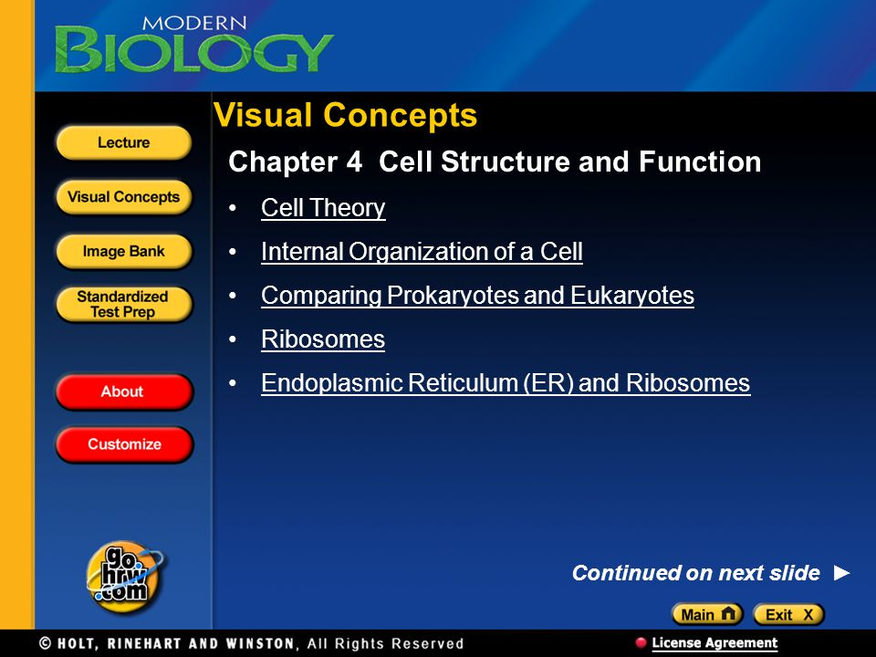 Visual Concepts Chapter 4 Cell Structure and Function Cell Theory
