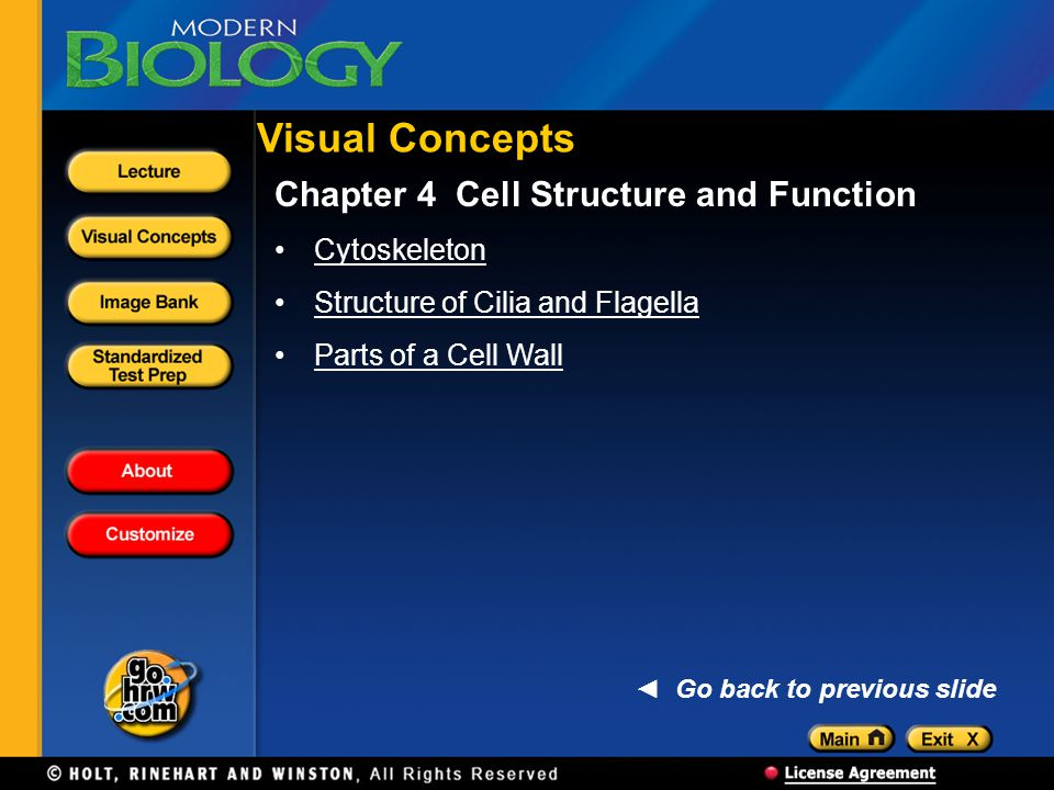 Visual Concepts Chapter 4 Cell Structure and Function Cytoskeleton