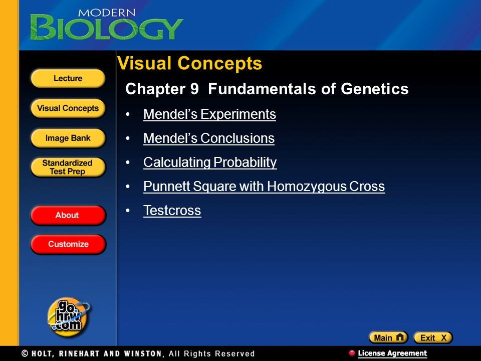 Visual Concepts Chapter 9 Fundamentals of Genetics