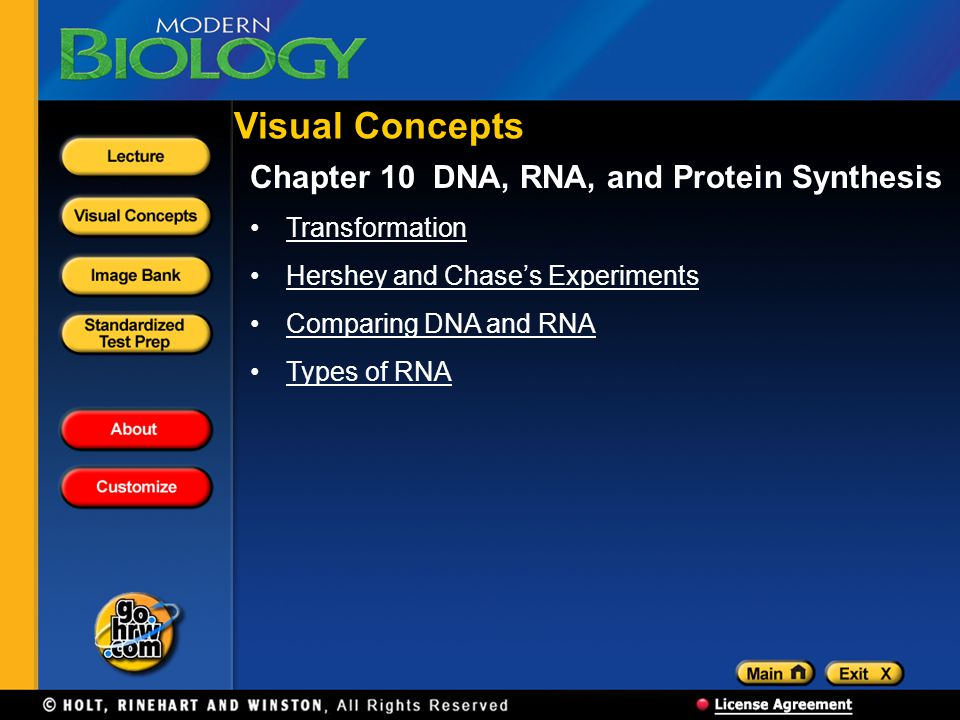 Visual Concepts Chapter 10 DNA, RNA, and Protein Synthesis
