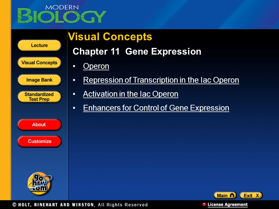 Visual Concepts Chapter 11 Gene Expression Operon