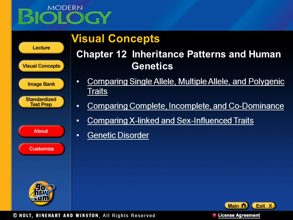 Visual Concepts Chapter 12 Inheritance Patterns and Human Genetics