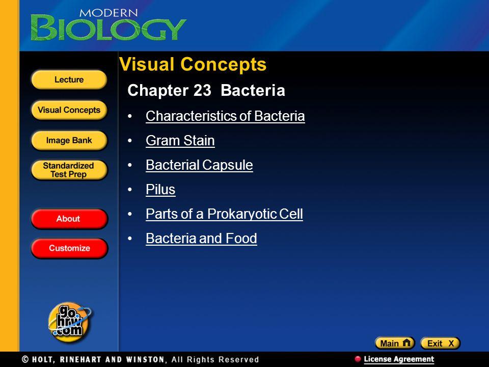 Visual Concepts Chapter 23 Bacteria Characteristics of Bacteria