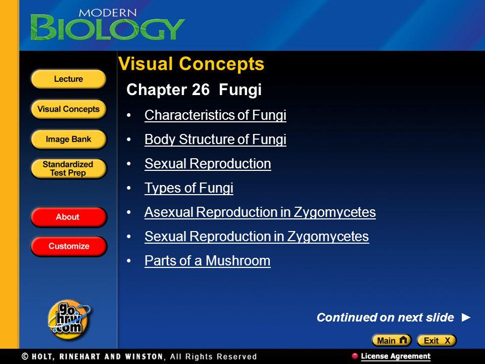 Visual Concepts Chapter 26 Fungi Characteristics of Fungi