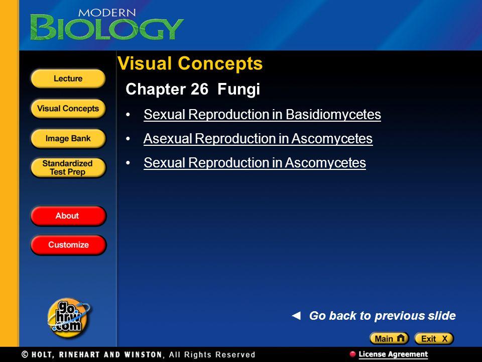 Visual Concepts Chapter 26 Fungi Sexual Reproduction in Basidiomycetes