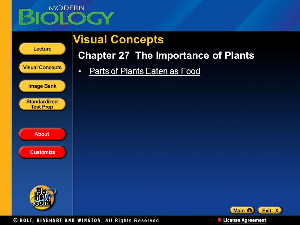 Visual Concepts Chapter 27 The Importance of Plants