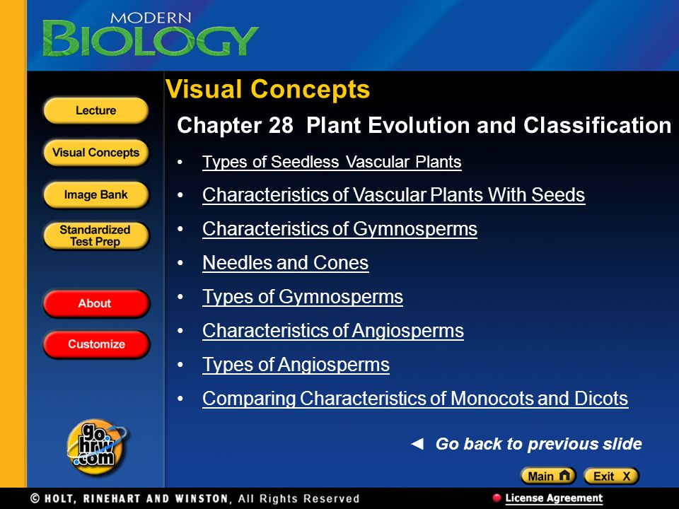 Visual Concepts Chapter 28 Plant Evolution and Classification