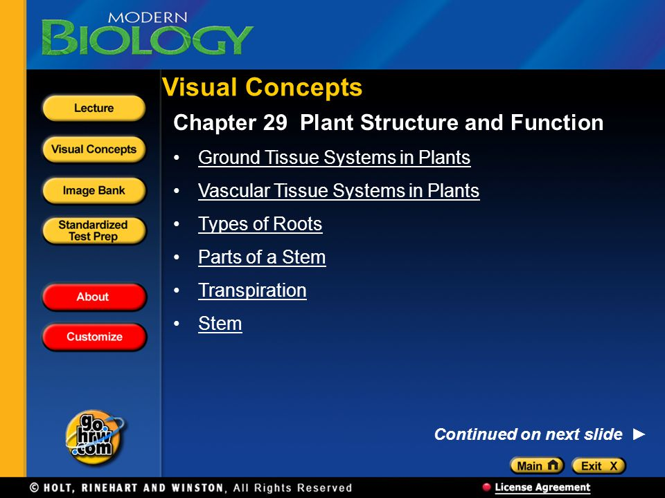 Visual Concepts Chapter 29 Plant Structure and Function