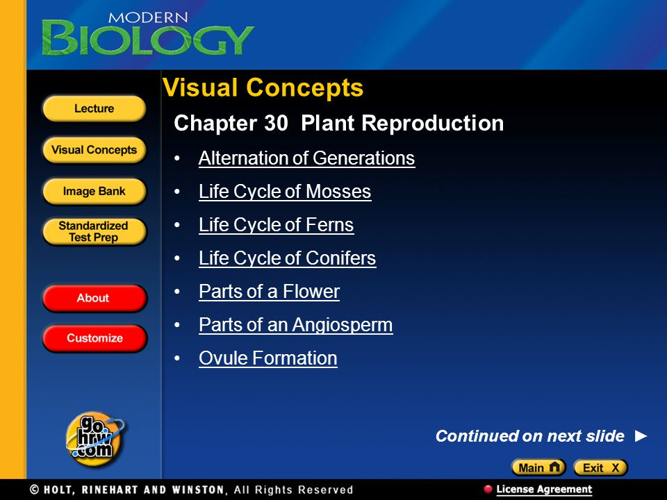 Visual Concepts Chapter 30 Plant Reproduction