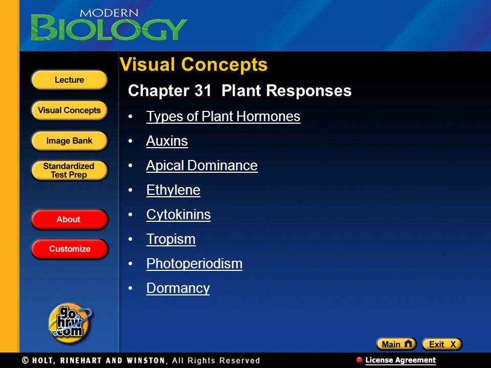 Visual Concepts Chapter 31 Plant Responses Types of Plant Hormones