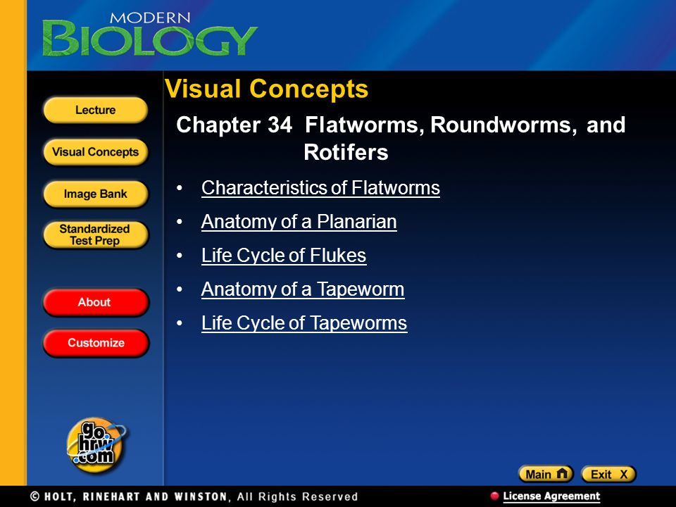 Visual Concepts Chapter 34 Flatworms, Roundworms, and Rotifers