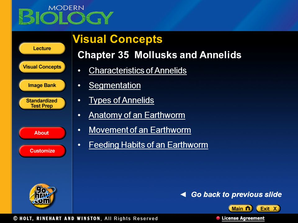 Visual Concepts Chapter 35 Mollusks and Annelids
