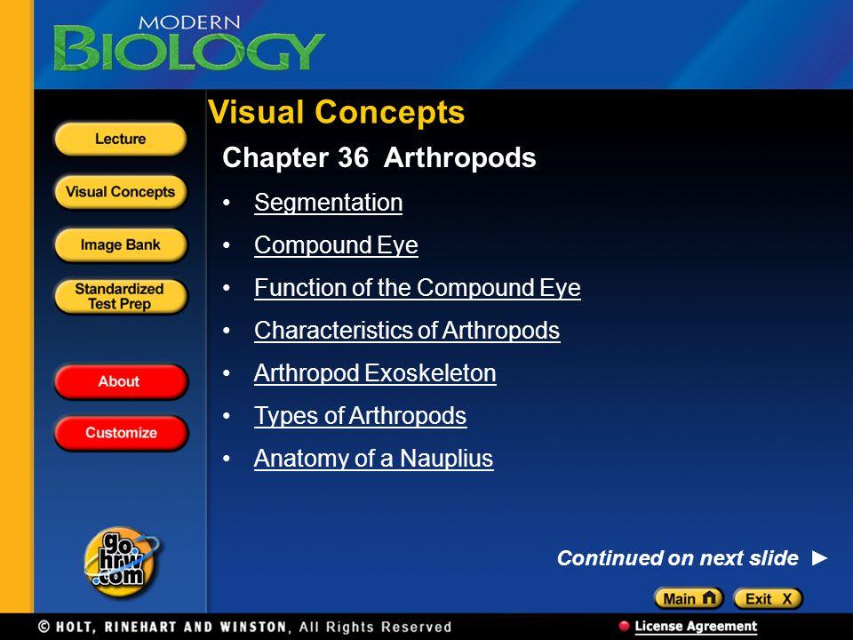 Visual Concepts Chapter 36 Arthropods Segmentation Compound Eye