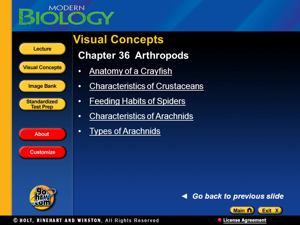 Visual Concepts Chapter 36 Arthropods Anatomy of a Crayfish