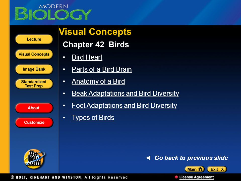 Visual Concepts Chapter 42 Birds Bird Heart Parts of a Bird Brain