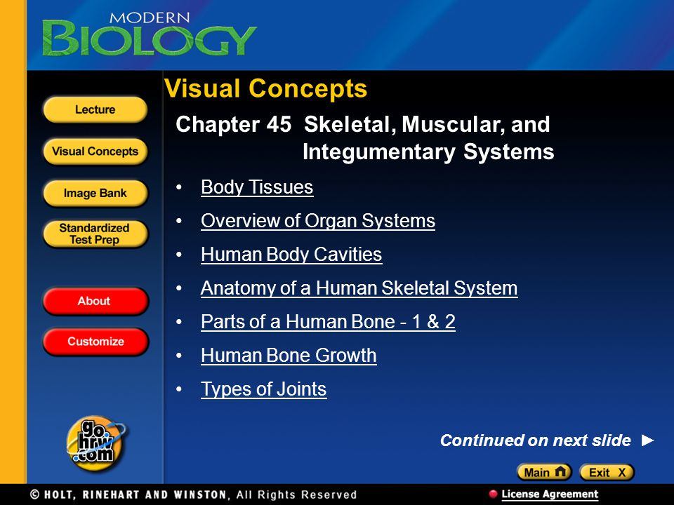 Visual Concepts Chapter 45 Skeletal, Muscular, and Integumentary Systems. Body Tissues. Overview of Organ Systems.