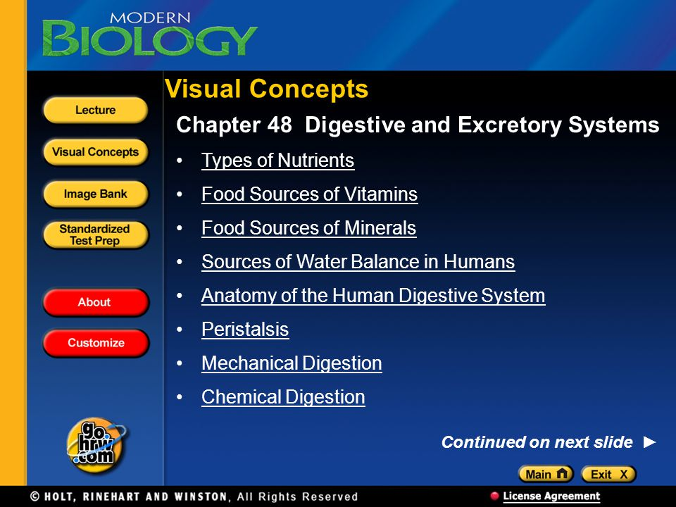 Visual Concepts Chapter 48 Digestive and Excretory Systems