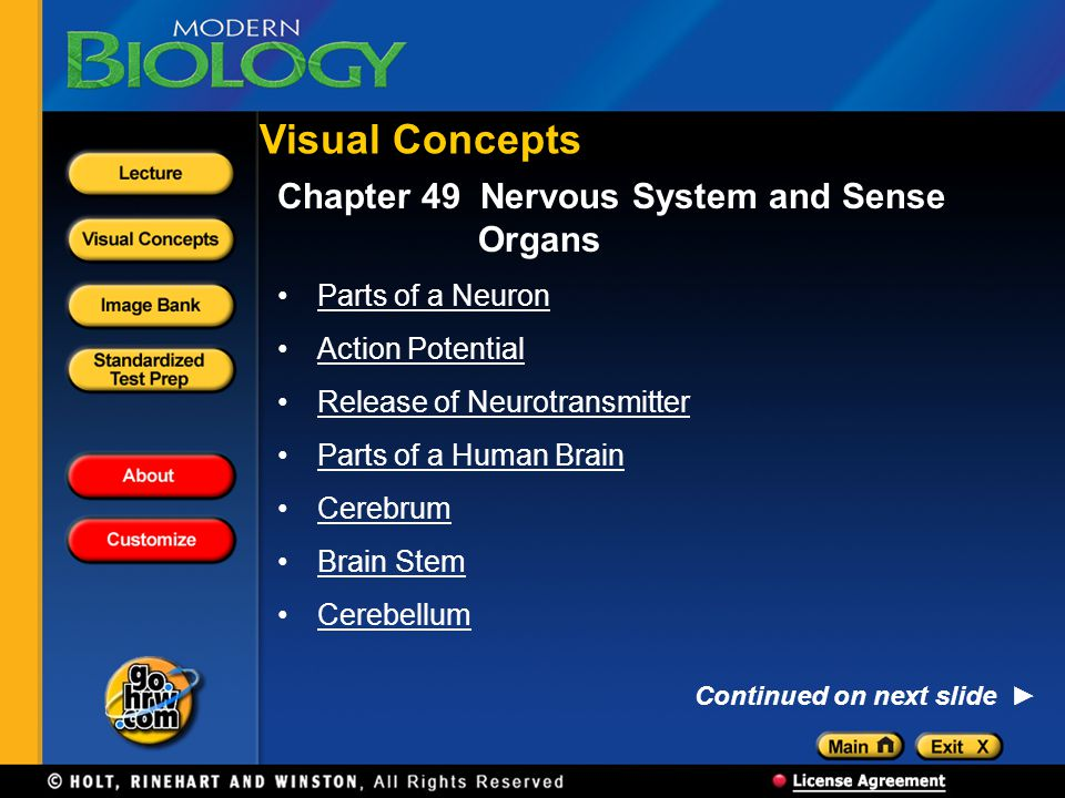 Visual Concepts Chapter 49 Nervous System and Sense Organs