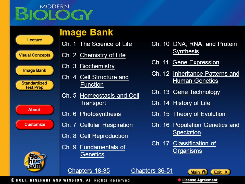 Image Bank Ch. 1 The Science of Life Ch. 2 Chemistry of Life