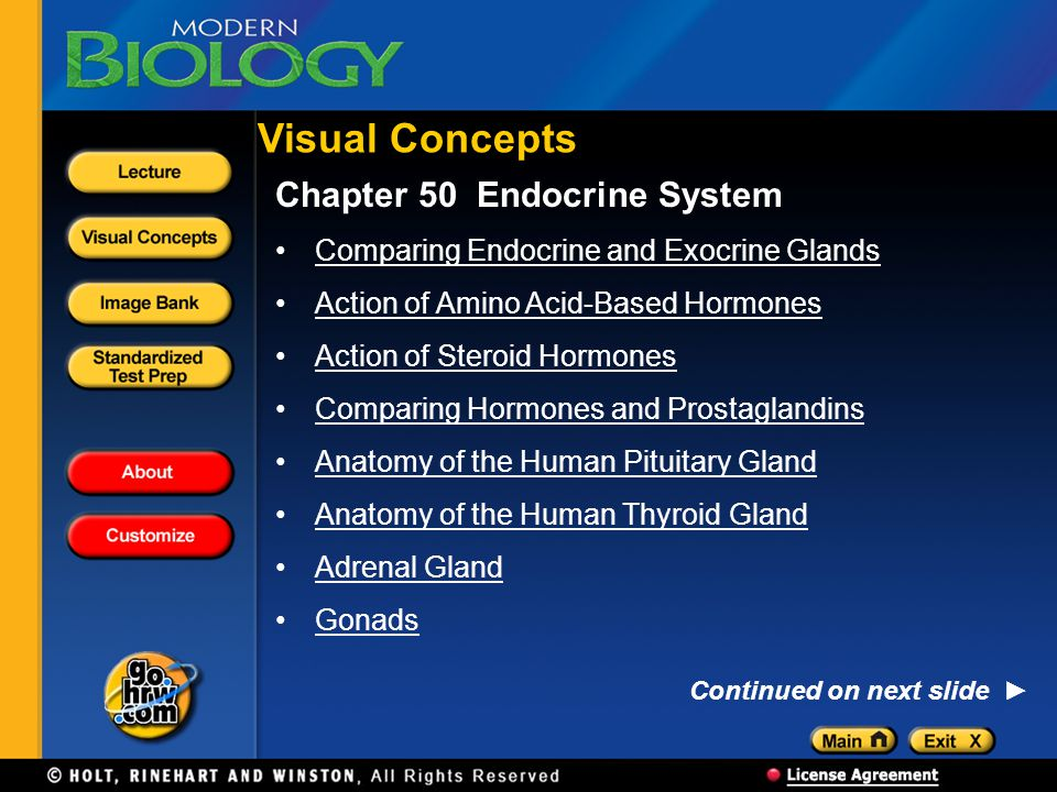 Visual Concepts Chapter 50 Endocrine System