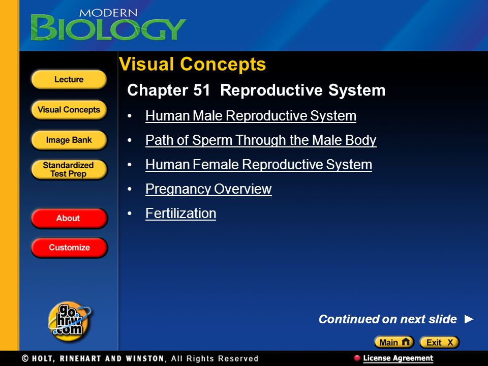 Visual Concepts Chapter 51 Reproductive System