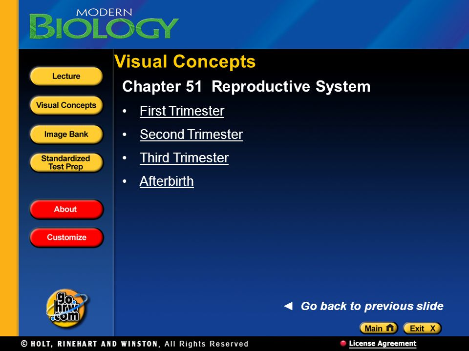 Visual Concepts Chapter 51 Reproductive System First Trimester