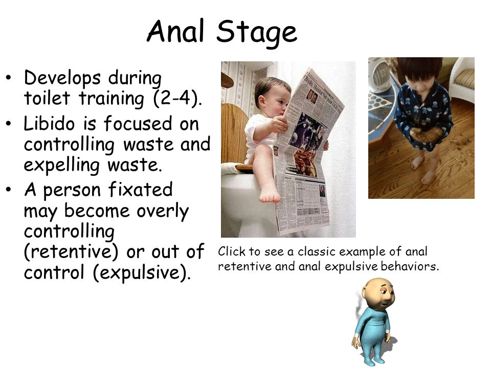 Anal Stage Develops during toilet training (2-4).
