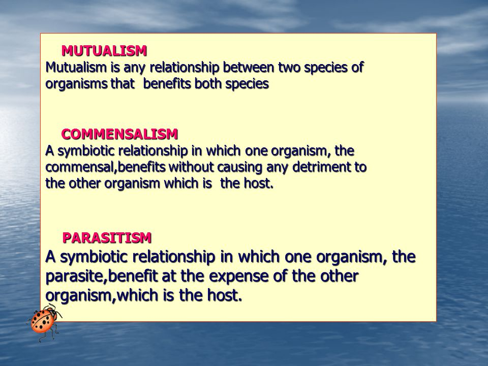 parasite,benefit at the expense of the other