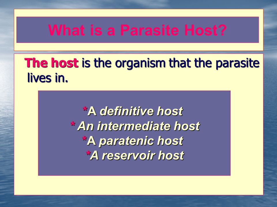 What is a Parasite Host The host is the organism that the parasite lives in. *A definitive host. * An intermediate host.