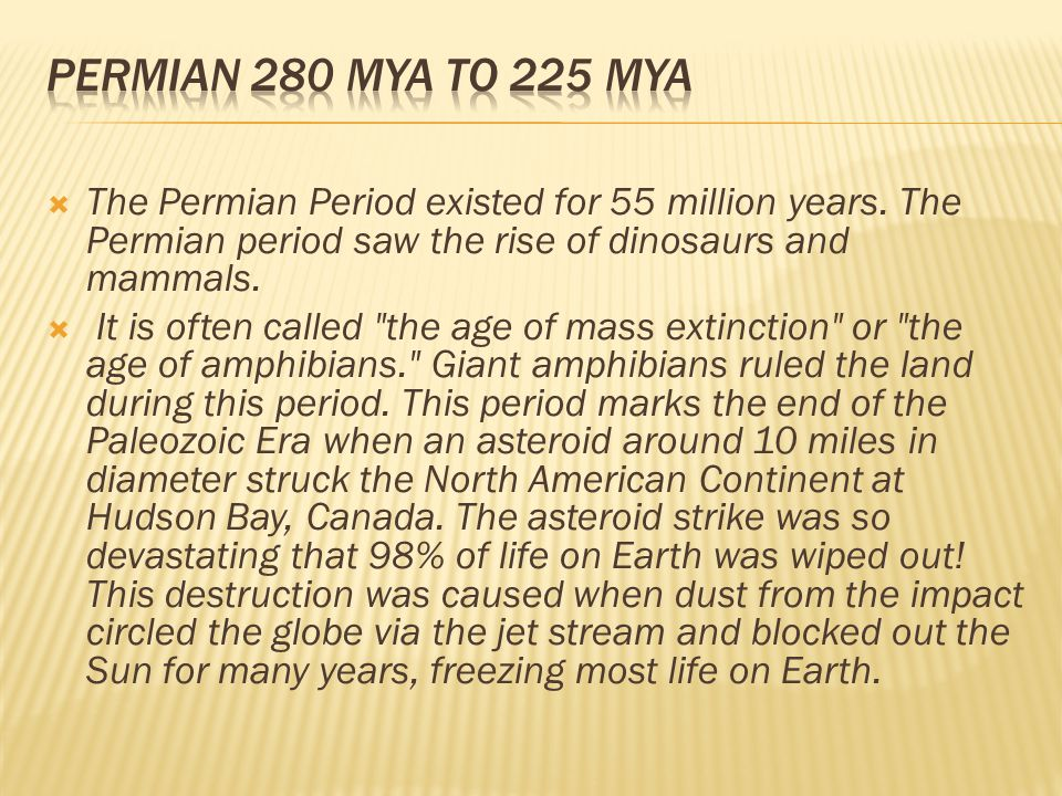 Permian 280 mya to 225 mya The Permian Period existed for 55 million years. The Permian period saw the rise of dinosaurs and mammals.