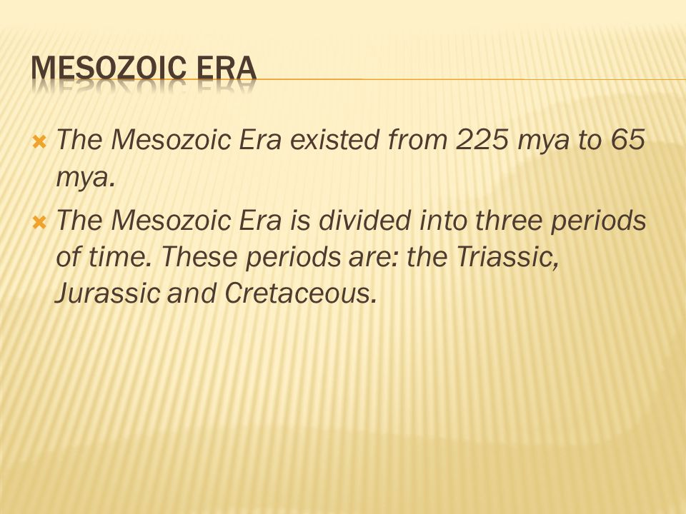 Mesozoic Era The Mesozoic Era existed from 225 mya to 65 mya.