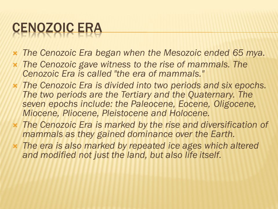 Cenozoic era The Cenozoic Era began when the Mesozoic ended 65 mya.