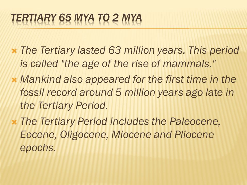 Tertiary 65 mya to 2 mya The Tertiary lasted 63 million years. This period is called the age of the rise of mammals.