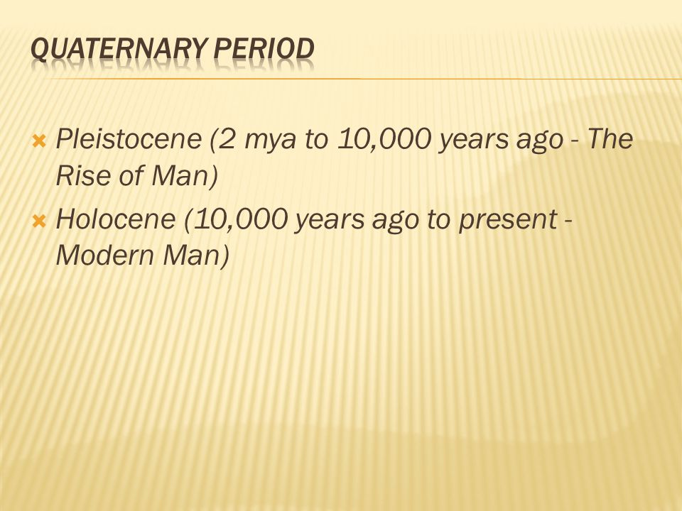 Quaternary Period Pleistocene (2 mya to 10,000 years ago - The Rise of Man) Holocene (10,000 years ago to present - Modern Man)
