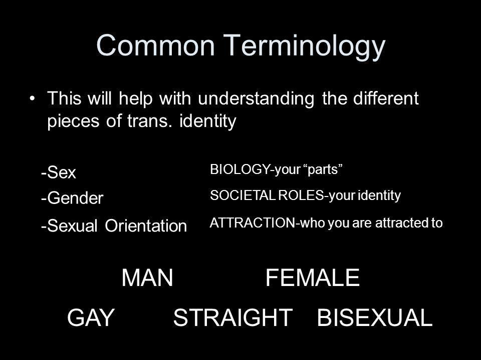 Common Terminology MAN FEMALE GAY STRAIGHT BISEXUAL