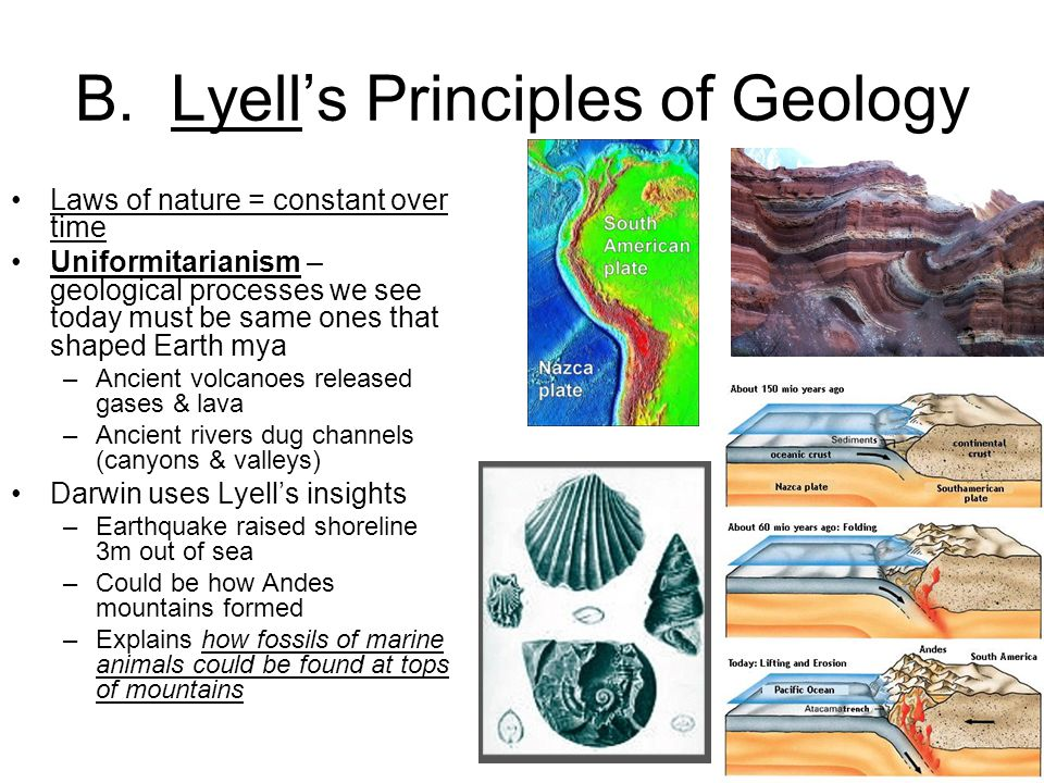 B. Lyell's Principles of Geology