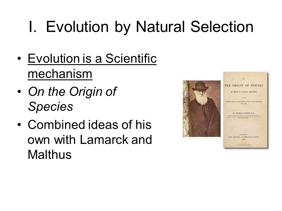 I. Evolution by Natural Selection